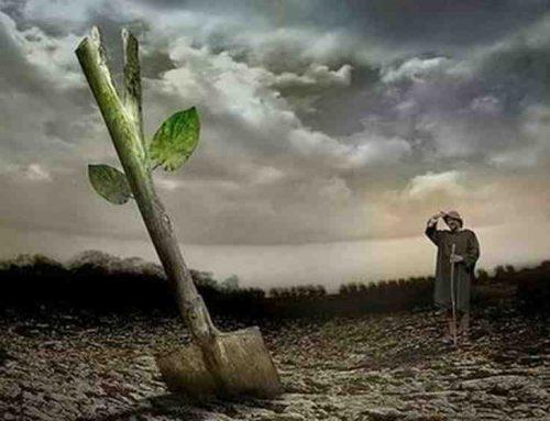 Το Πράσινο Κίνημα τιμά την Παγκόσμια Ημέρα Αγροτικής Πάλης