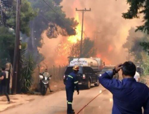 Πράσινο Κίνημα: Στο ίδιο έργο θεατές με τις πυρκαγιές – Παραμένει άγνωστη λέξη η πρόληψη
